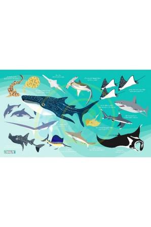 Sharks & Rays pattern towel...
