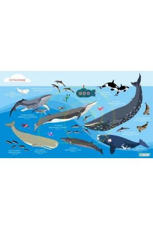 Cetaceans pattern towel Big...
