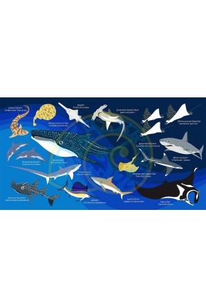 Toalha de Tubarão Azul...
