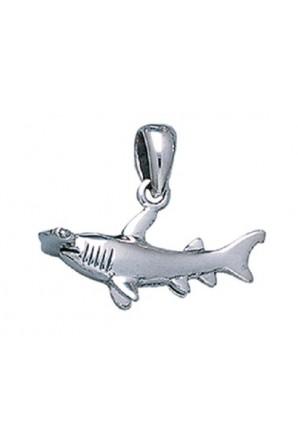 Piccolo ciondolo di squalo...