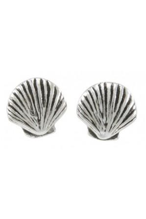 Seasheel Post Earring