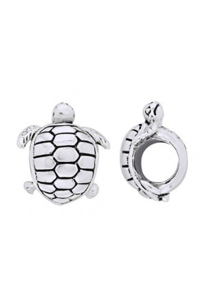 conto di tartaruga