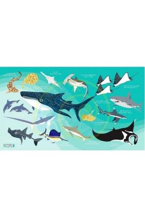 Toalla Tiburones Verde...