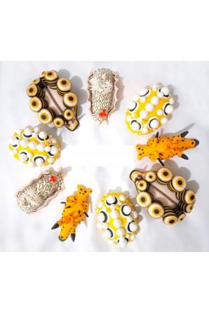 Nudibranch Magnet